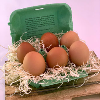 Huevos Ecológicos 6 Und.